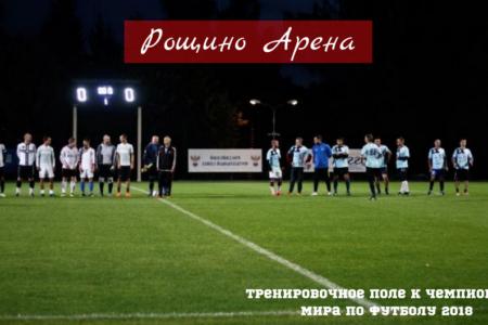 Освещение футбольного поля Рощино Арена